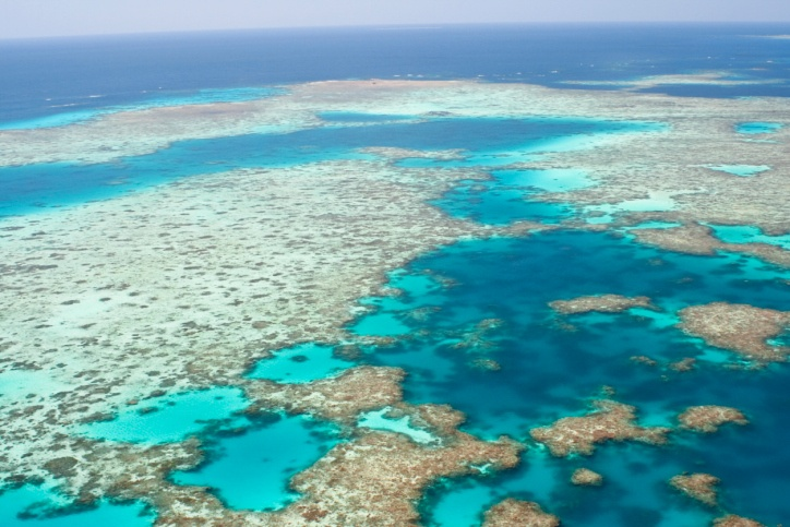 Great Barrier Reef, AustraliaCoral Reef, Omg Facts, Great Barrier Reef, Australia, Visit, Travel, Places, The Great