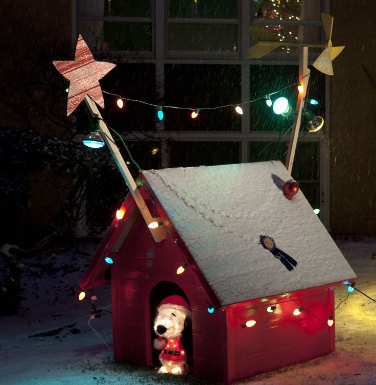 Last year, Dale joked that once we were settled into our house we'd start working on creating our own kind of Griswold Christmas Spectacle by making an over-sized decorate doghouse like Snoopy had in A Charlie Brown Christmas. Dale's mom came to visit last week and she's been asking when we were going to have …