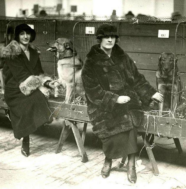 amsterdam hondententoonstelling RAI 1924