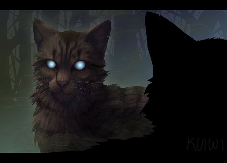 All Clan Meeting Calls | Warriors Amino - Warrior cats meet the