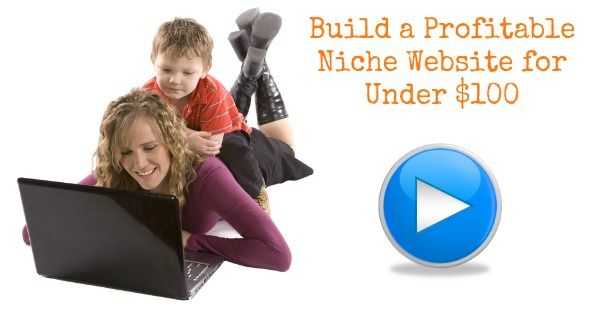 How to Build a Profitable Niche Website for Under 100 Using the Power of Long Tail Pro