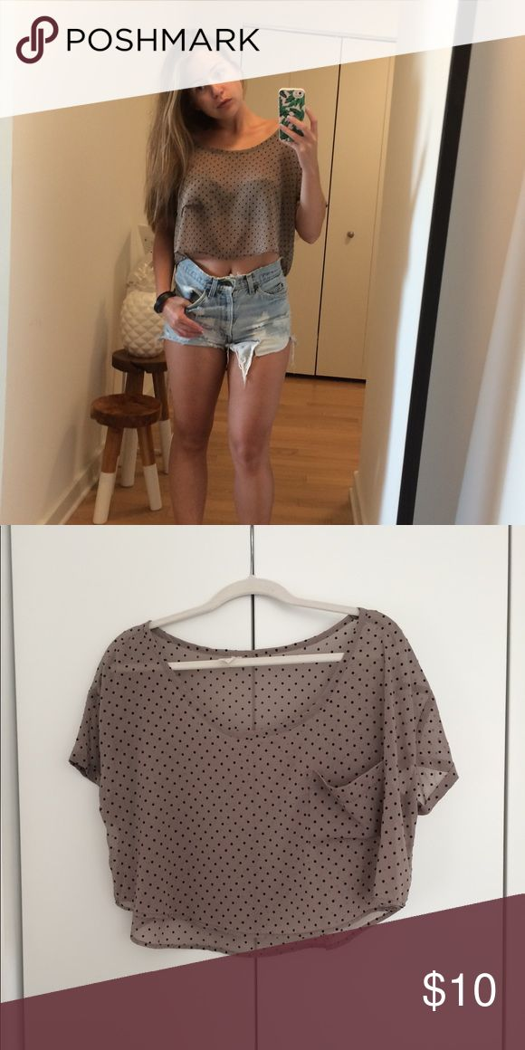 Sheer Polka Dot Crop Top Boutique Purchase.  Sheer polka dot crop top with front pocket.  Super cute top can be dressed up with jeans or down with shorts and sneakers.  Brand is Lovely Day. Lovely Day Tops Crop Tops