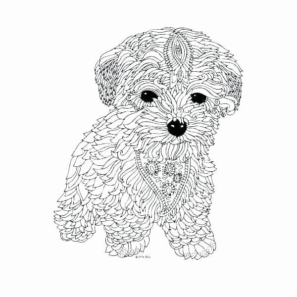 Australian Animal Coloring Pages Free Animal Coloring Pages Dog Coloring Book