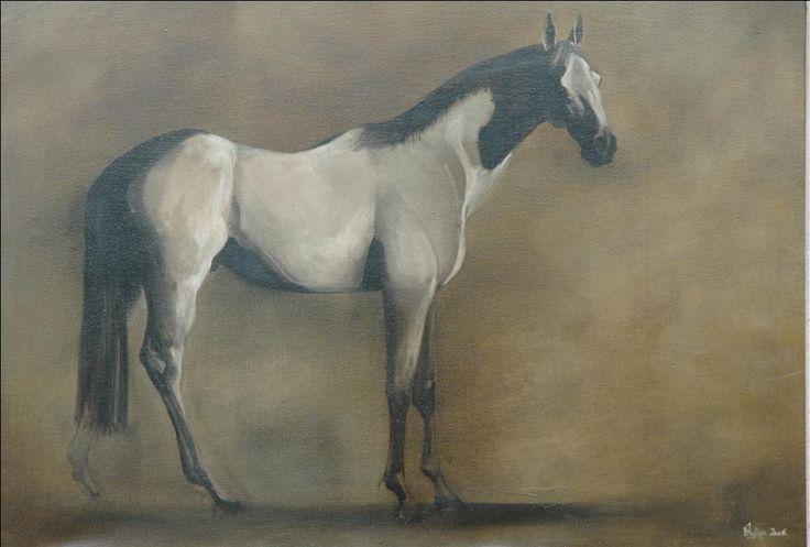 www.phyllipa.com - Horses