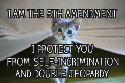 Double Jeopardy 5th Amendment 17 Best images about 5...