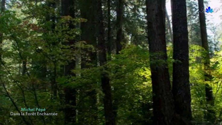 ✿ ♡ ✿ Michel Pépé - Dans la Forêt Enchantée(album La Cascade Féerique 2013)