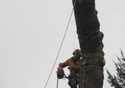 arboriste-grimpeur-ardeche