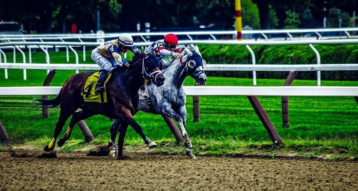 ÉRIC DÉVOILE LES SUJETS QU'IL TRAITERA SUR LES ONDES DU 96.9 FM \ LÉVIS: LE LUNDI 16 AVRIL 2018  Photo: https://pixabay.com/en/saratoga-springs-new-york-horses-1785314/  #electionsquebec2018 #patriotismecommunautarien #paritehommesfemmes