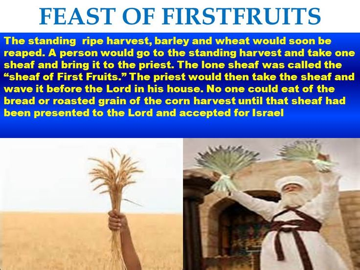 Image result for blessings and readings for the feast of first fruits in messianic judaism