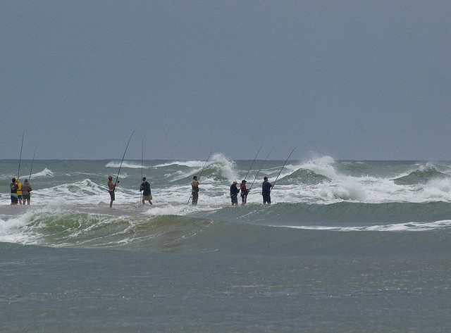 156 best images about north carolina outer banks on for Carolina beach fishing