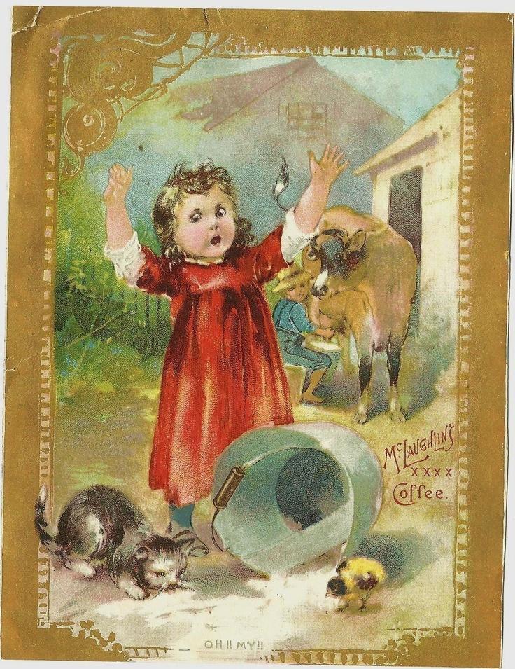 Mclaughlins >> Kitten Drinks Spilled Pail Milk Boy Milks Cow Trade Card McLaughlins XXXX Coffee