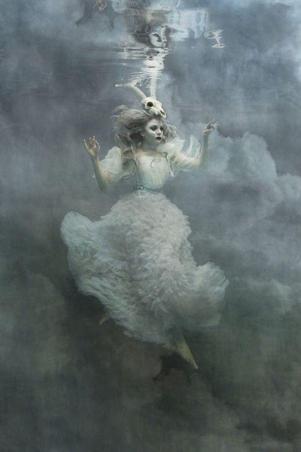 «Альбатрос» — Мазер Лаут в собственном творении
