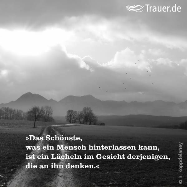 660 best images about zitate on pinterest