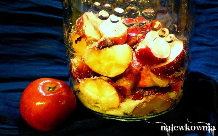 Nalewka jabłkowa