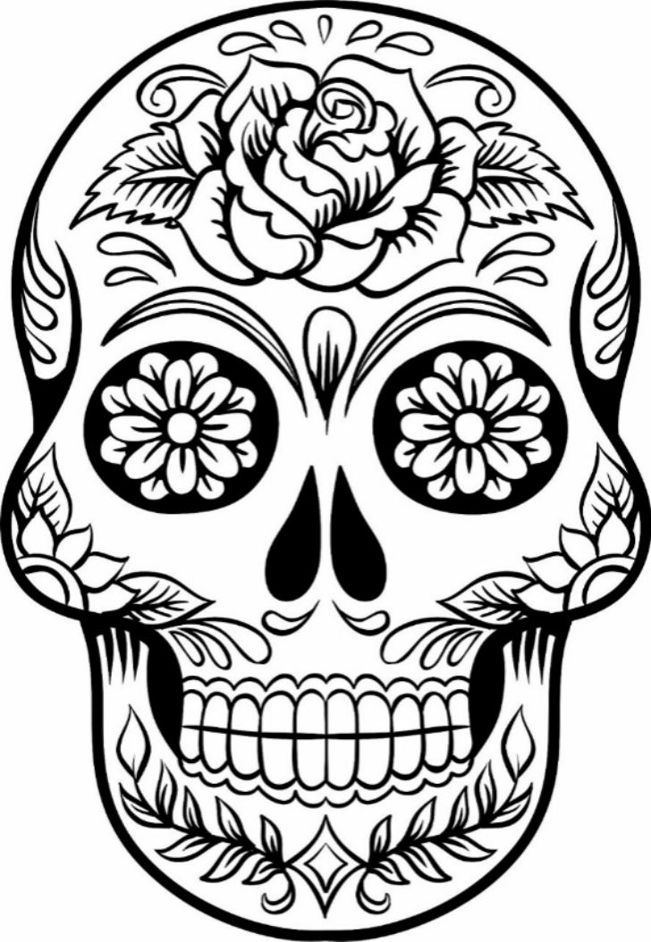 Skull Line Drawing Easy : Best sugar skull drawings ideas on pinterest