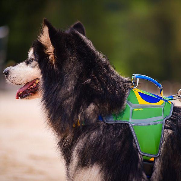 Massage Dog Harness Brazilian Style Qqpets Massage Dogharness
