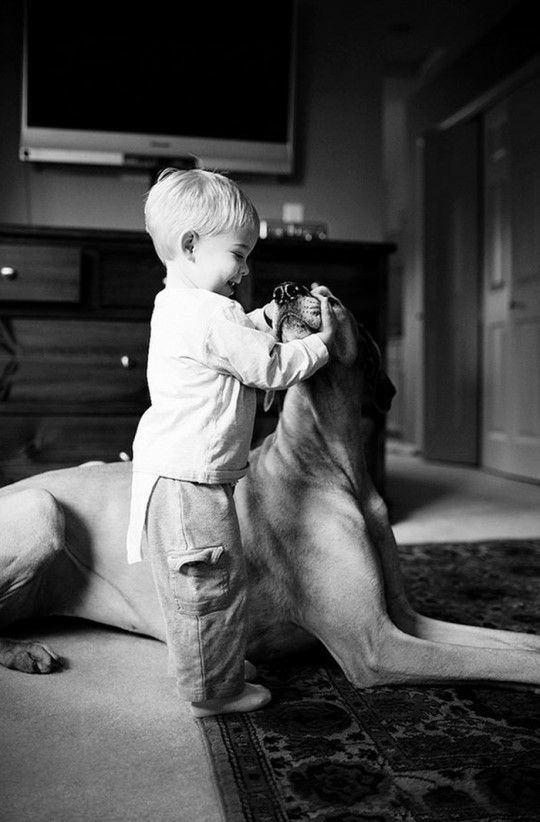 Good boy....
