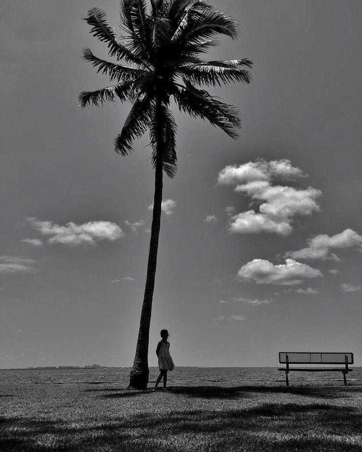 Photo: @robertclarkphoto // Big tree little girl. Miami Florida. #Miami #Florida by thephotosociety
