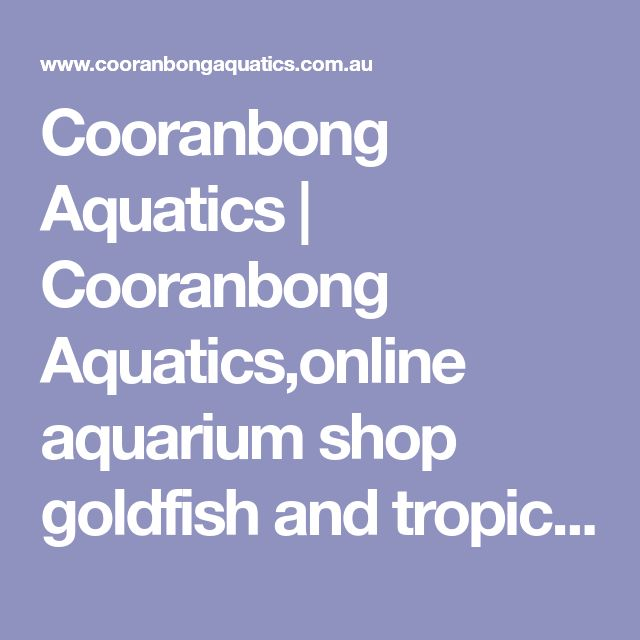 Cooranbong Aquatics | Cooranbong Aquatics,online aquarium shop goldfish and tropical fish