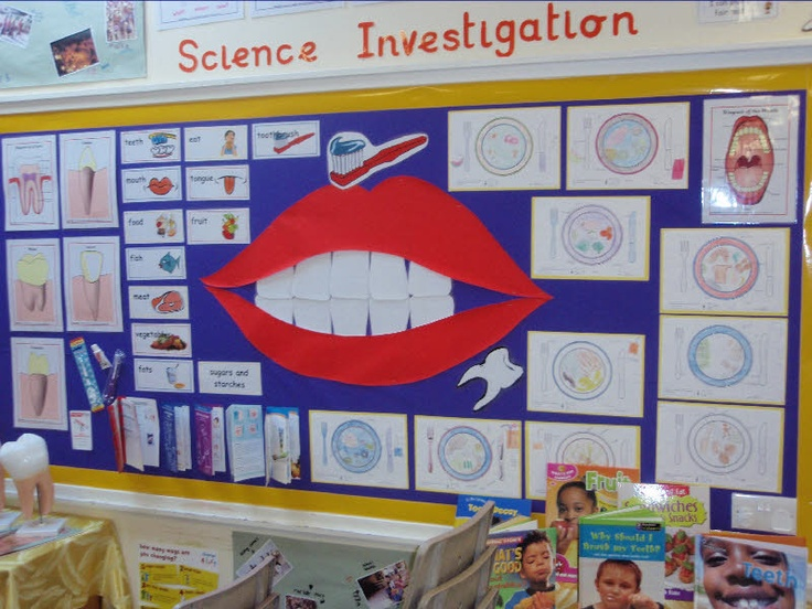 Teeth And Eating Classroom Display Photo Photo Gallery