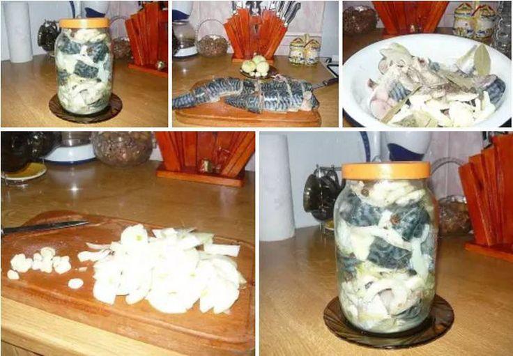 1,492 отметок «Нравится», 16 комментариев — Вкусно готовить легко! (@vse_prosto_ochen) в Instagram: «МАРИНУЕМ СКУМБРИЮ.  Рыбу и морепродукты обожаю любые и в любом виде,но свою маринованную скумбрию…»