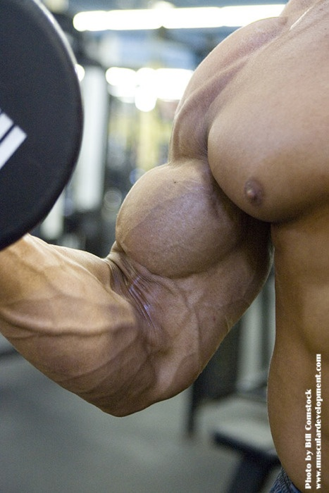 Fuck Me Muscles 79