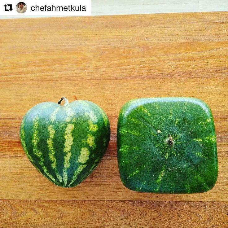#Repost @chefahmetkula (@get_repost)  New style Watermelon.. Made in Turkey.. #bestoftheday #best#beautiful#like#likes#instagood#amazing#turkish#turkiye#photo#photooftheday#chefs#foods#instafood#fruit#like4like#chefsofinstagram#luxury#foodart #nature# @tastemadeuk @buzzfeedtasty @tastemade @tastemade_japan @nytfood @instagram @beautifulcuisines