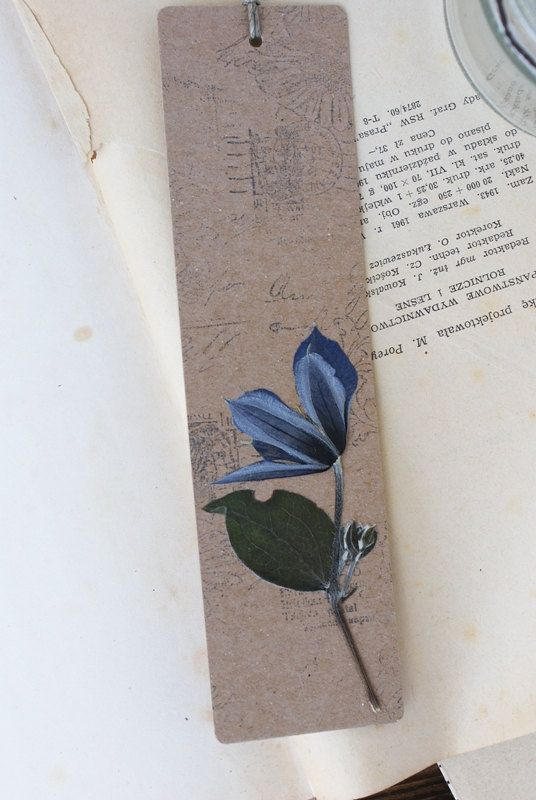 bookmark dried flowers dried plants pressed flower by mamwene