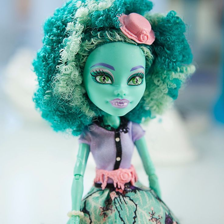 Monster HIgh Honey Swamp with Accessories Excellent Condition