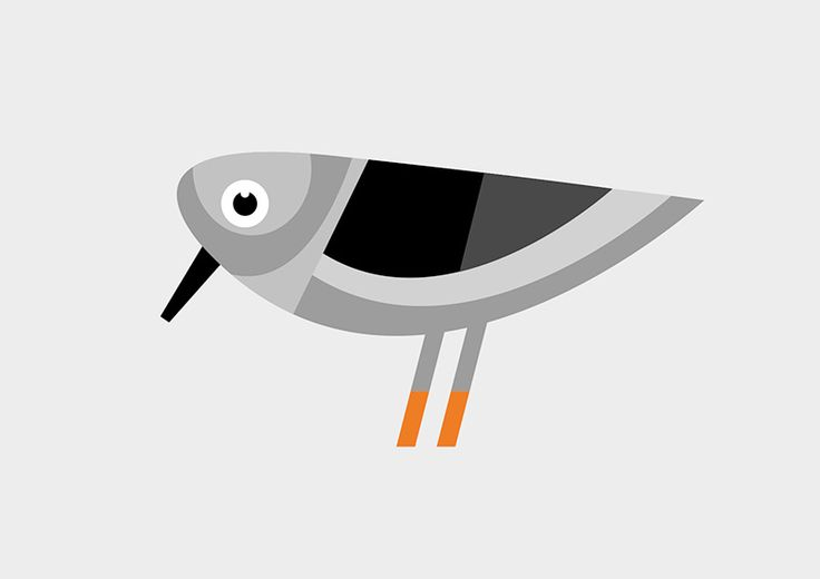 Bird illustration by Simon Ackeby #Birds #illustration #Poster #ackebydesign