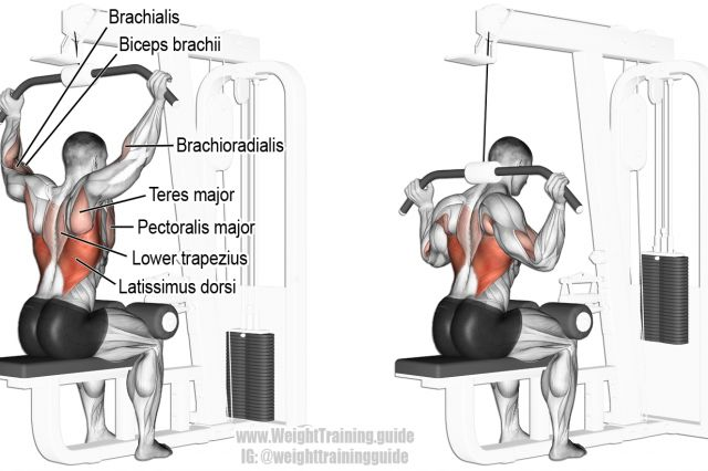 Behind-the-neck lat pull-down exercise