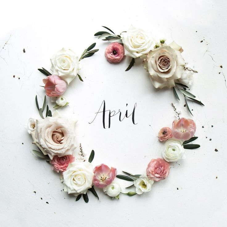 Hello April! Here's to a good one. If I'm allowed to have personal favourites then this wreath is my new one, something about the colours I think. Or the olive leaves - they have been an obsession of mine since last summer. My calligraphy still needs work though, this took an embarrassing number of failures to get almost right... #WHPhowicreate