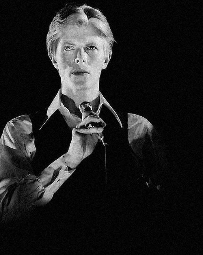 David Bowie Perücke