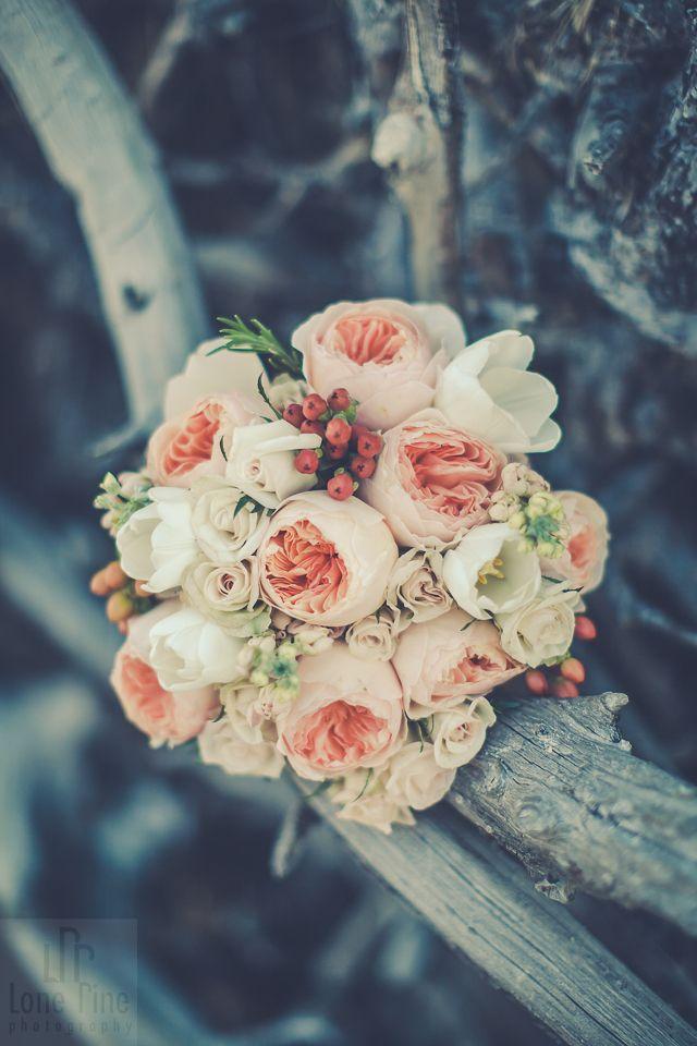 A stunning bouquet! Love the mix!