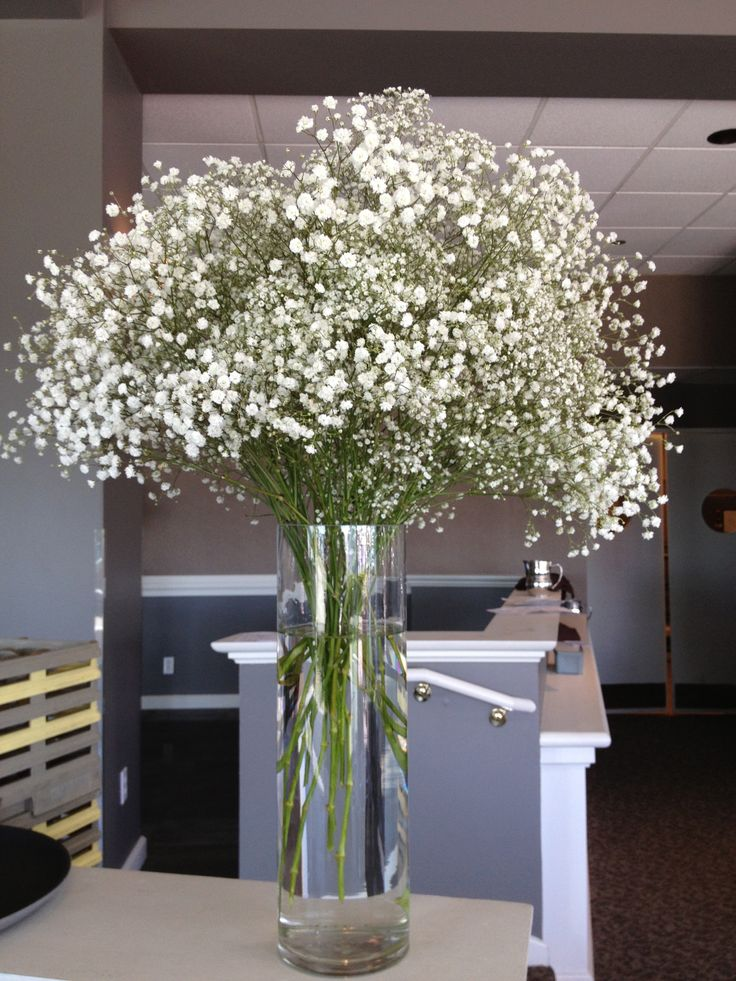 Baby's Breath in Cylinder VAse for Entry of Marina Room ...