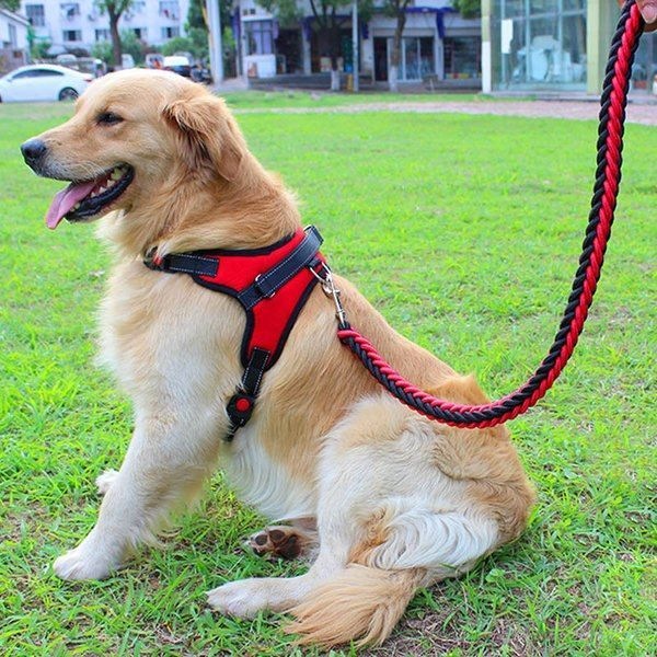 Online Shopping For With Free Worldwide Shipping Dog Harness