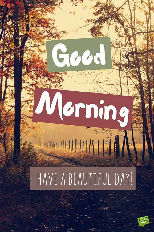 Amazing Good Morning Images and Quotes