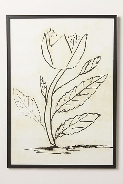 Do different botanical sketches, frame them and hang them. Done.