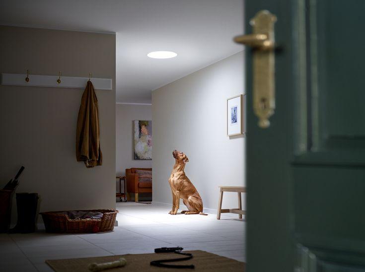 19 best velux tageslicht spot images on pinterest natural light centerpiece ideas and decor ideas. Black Bedroom Furniture Sets. Home Design Ideas