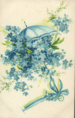 Victorian forget-me-nots