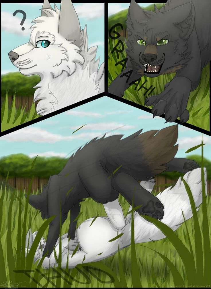 Next: in progress Previous:serenitywhitewolf.deviantart.c… These pages take so long compared to E.O.A.R pages .-. Black wolf be like: SURPRISE MOFO! Art & comic & MOON (c) me A...
