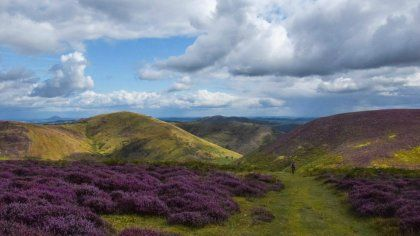 Carding Mill Valley and the Long Mynd - Take a walk across the wildlife-rich heathland and enjoy the views across the Shropshire Hills, or simply play in the stream in the valley.