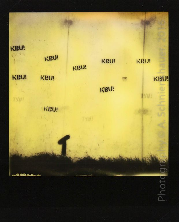 """Wall @ TIVOLI 