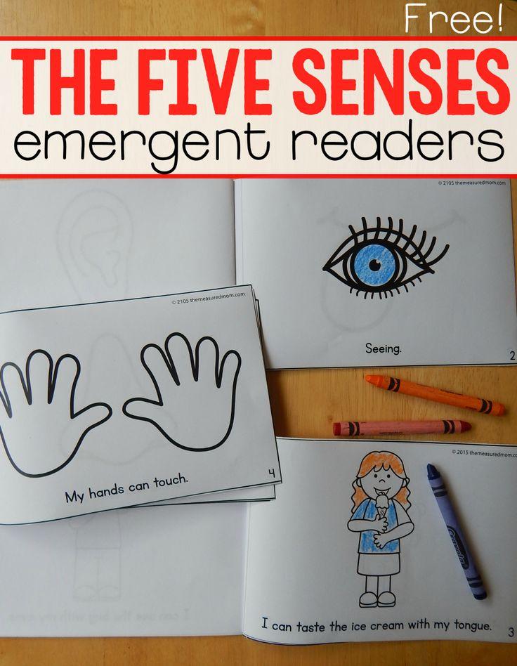 110a969d34434d3e7373e3bbfab26cb2   senses preschool phonics books - Five Senses Kindergarten