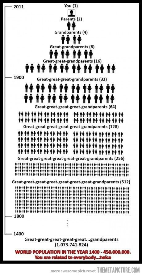 Maths investigation idea. Graphic showing how the numbers of ancestors doubles at each generation.