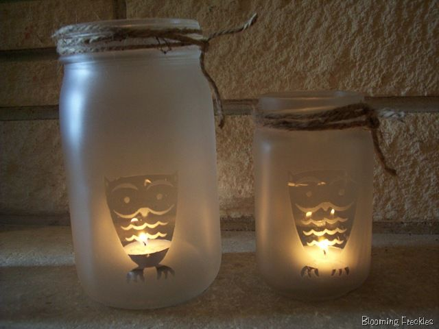 @Rachael Higgins Owl Mason Jar Lights!!!!