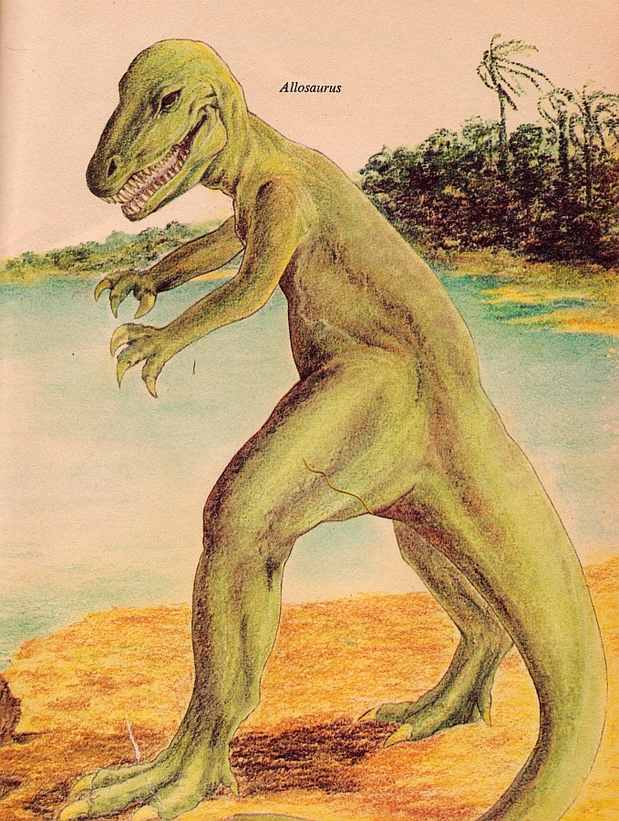 Allosaurus illustration from The How and Why Wonder Book of DinosaursWonder Book, Dinosaurs Art, Vintage Paleo, Dinosaurs Revolutions, Allosaurus Illustration, Vintage Dinosaurs