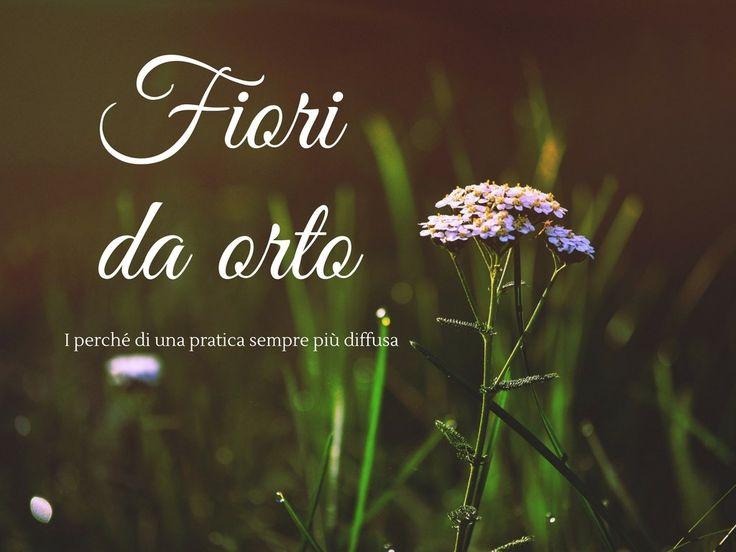 I fiori nell'orto
