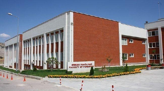 Suleyman Demirel Universitesi Orman Fakultesi Nenerede Web Sitemiz Www Nenerede Com Tr Ormanlar Peyzaj Suleyman