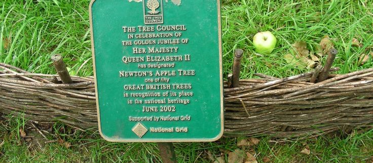 Great British Tree sign by Isaac Newton's apple tree at Woolsthorpe Manor